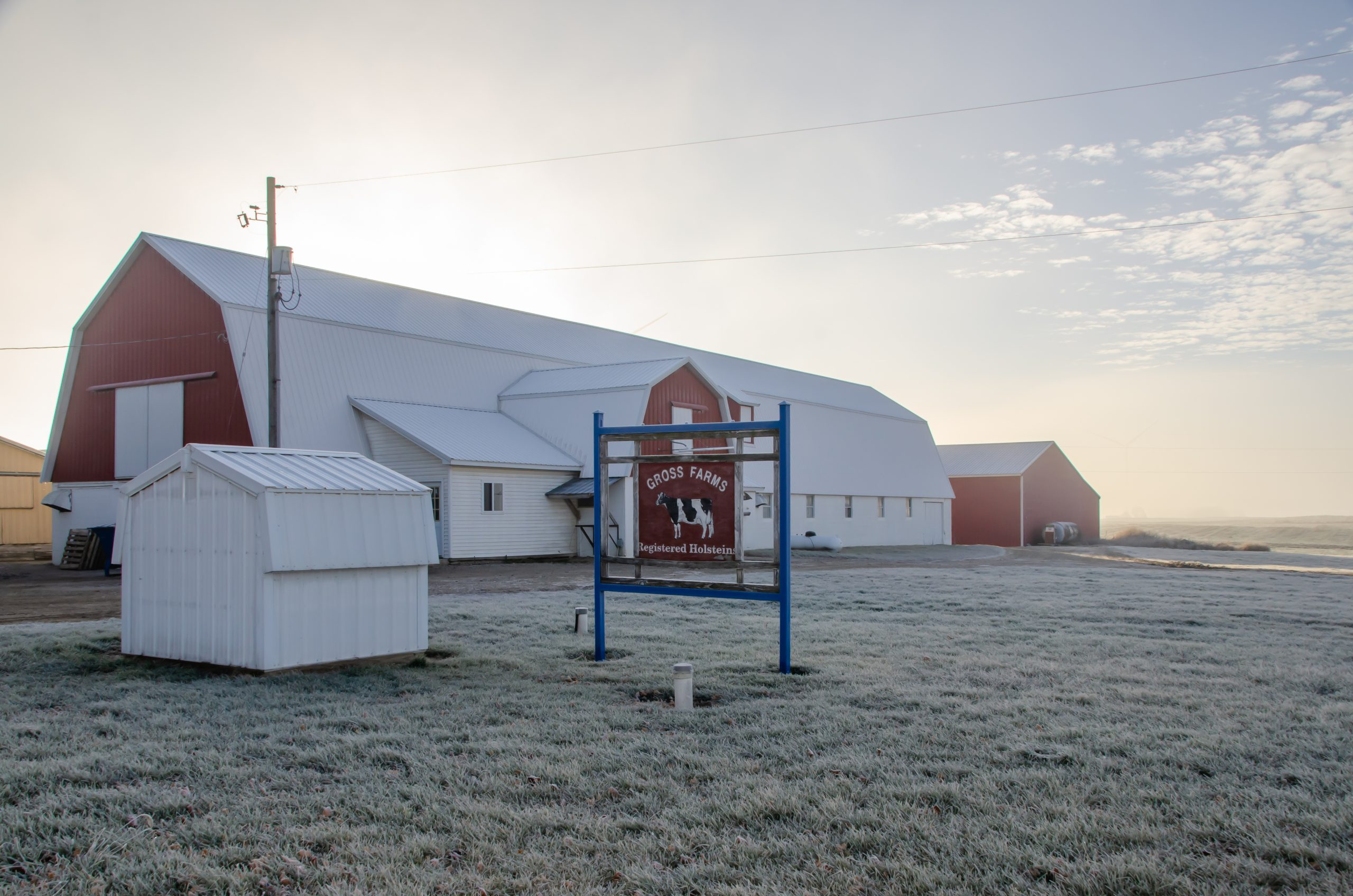Gross Farms on a frosty morning.